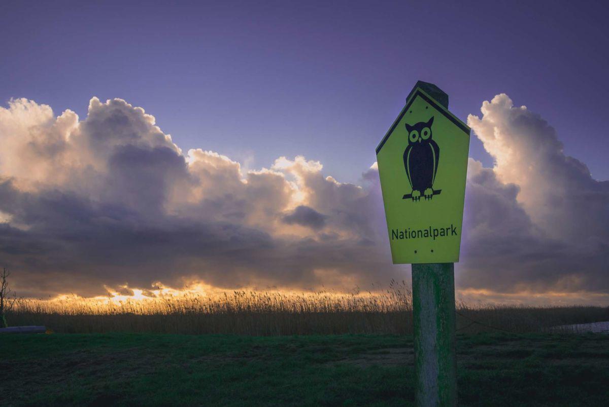 Willkommen im Nationalpark Vorpommersche Boddenlandschaft.