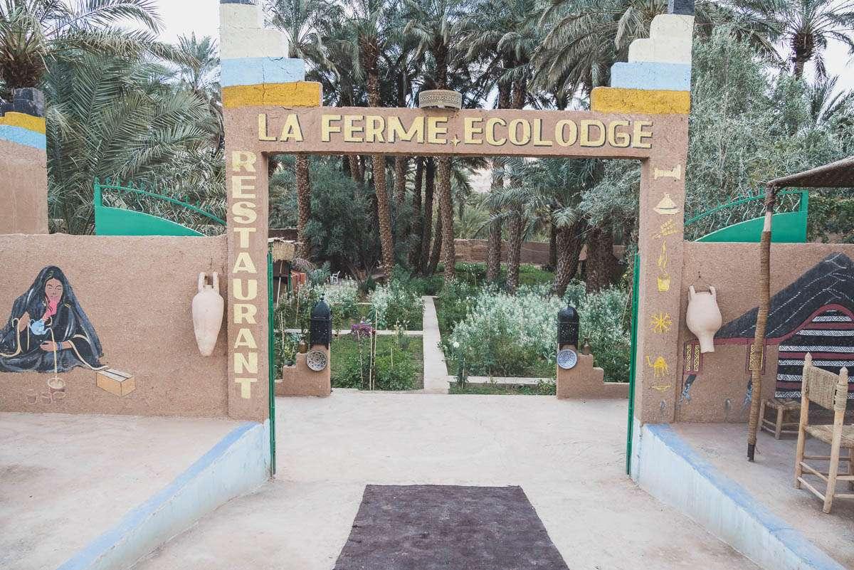 Der Garten Eden nach einer fast pflanzenlosen Wüste