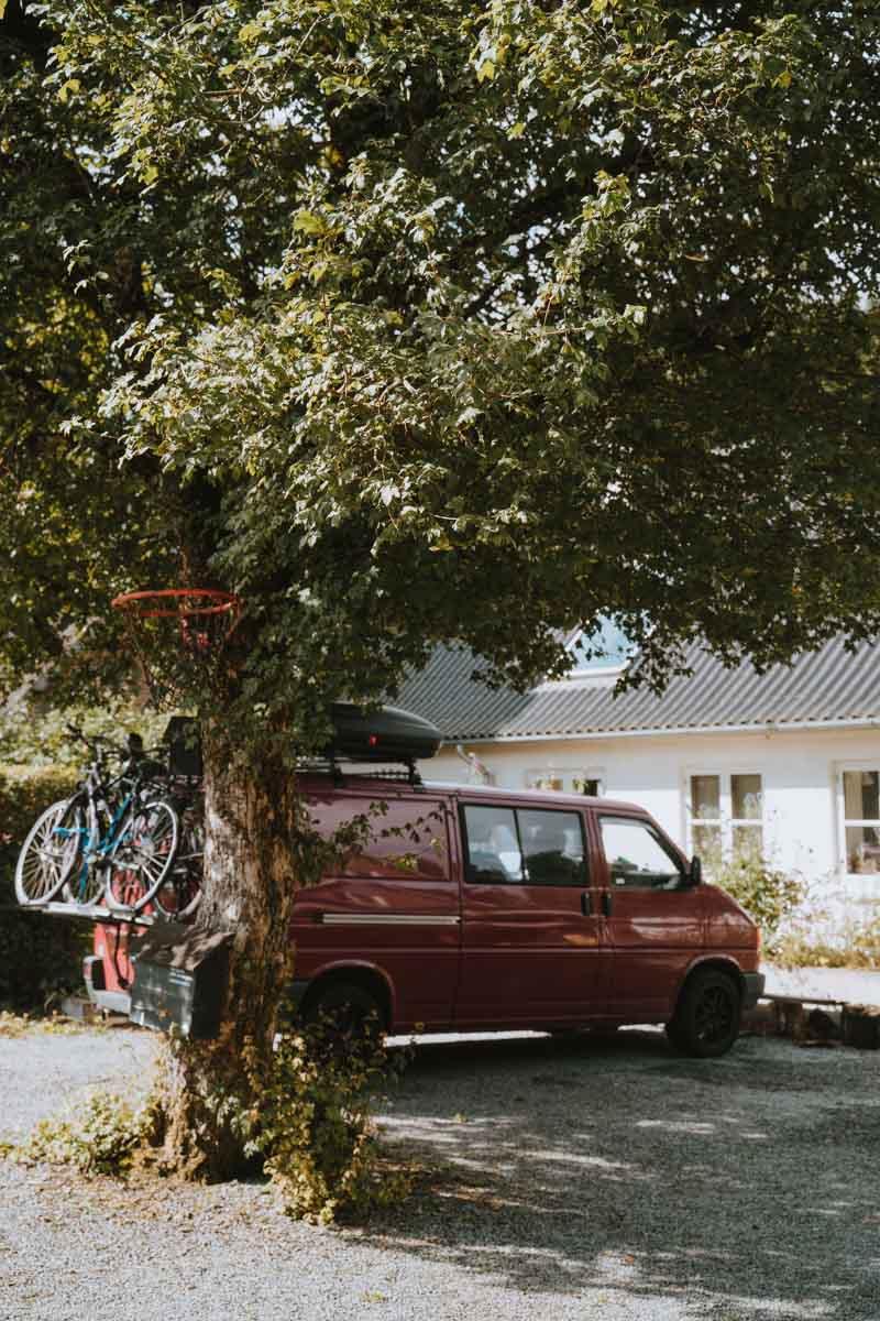 VW Bus under a Tree